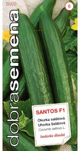 SANTOS F1 - 10 ks