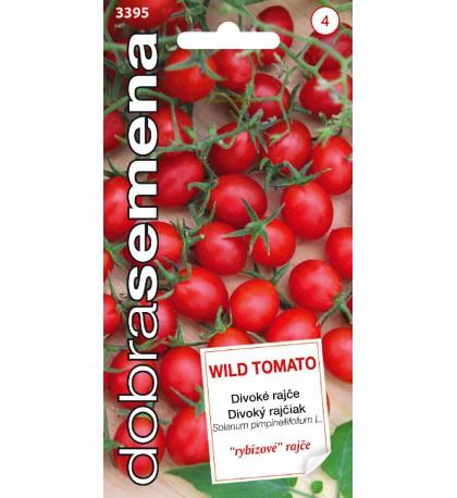 Divoké rajče - 15 ks