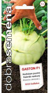 GASTON F1 - 40 ks