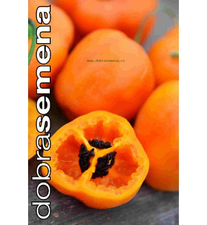 ROCOTO ORANGE - 10 ks