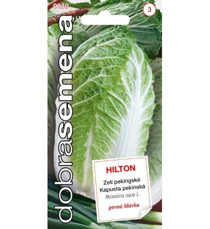 HILTON - 100 ks