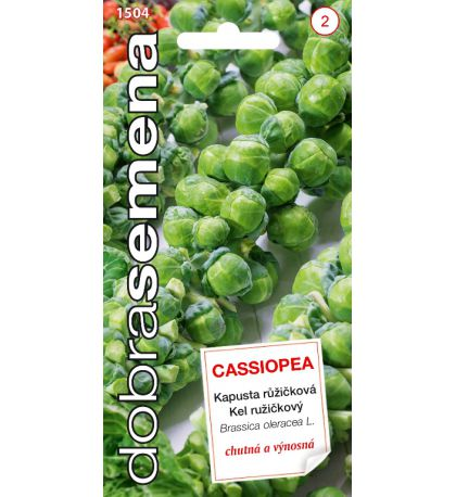 CASSIOPEA - 0,7 G