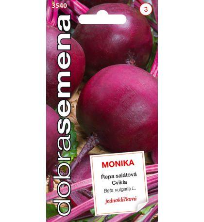 ŘEPA SALÁTOVÁ - MONIKA 1,5 G
