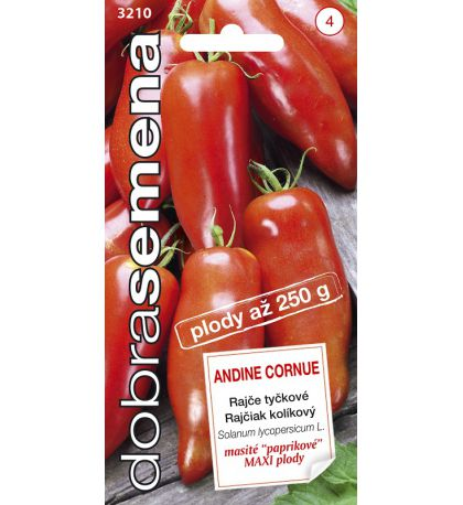 ANDINE CORNUE - 10 ks