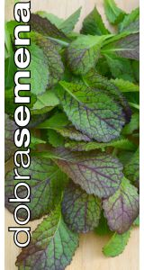 RED GIANT MUSTARD - 2 g