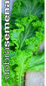 SOUTHERN GIANT MUSTARD - 2 g